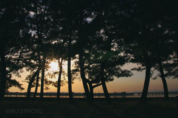 ある日の浜名湖夕景_c0037519_02356.jpg