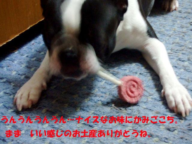 f0059334_1092479.jpg