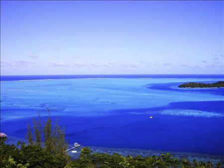 Tahitiに連れてって。              2007年3月10日_d0083265_16181088.jpg