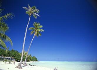 Tahitiに連れてって。              2007年3月10日_d0083265_162836100.jpg