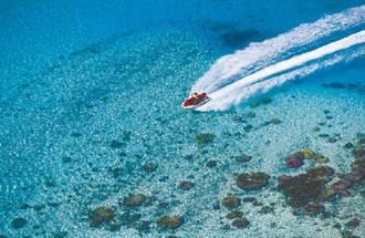 Tahitiに連れてって。              2007年3月10日_d0083265_16402371.jpg