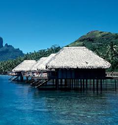 Tahitiに連れてって。              2007年3月10日_d0083265_1722350.jpg