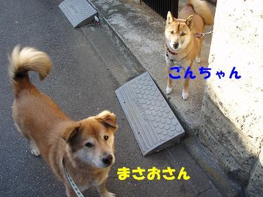 c0000189_122816.jpg