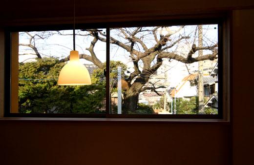 桜見の家 借景_b0015157_0135886.jpg