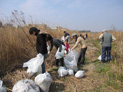 多摩川のお掃除_c0091679_14504868.jpg