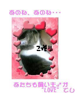 b0022595_1723312.jpg