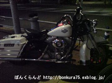 b0080809_0563353.jpg