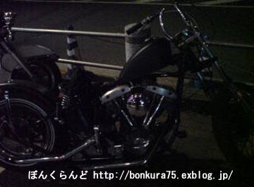b0080809_0564014.jpg