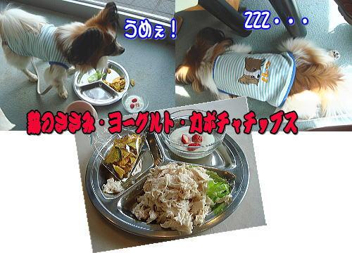 f0011845_8503032.jpg