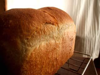ハード食パン_c0110869_14364418.jpg