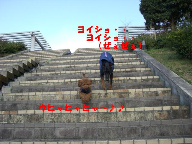 a0088086_0434996.jpg