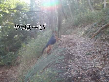 f0133723_20252684.jpg