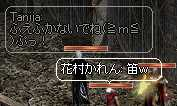 b0032347_10111559.jpg
