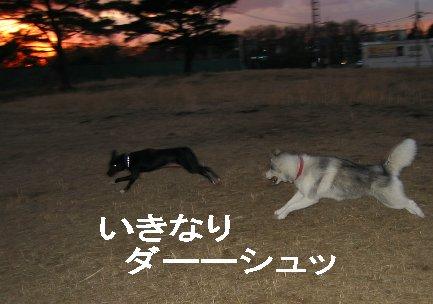 f0112407_1627789.jpg