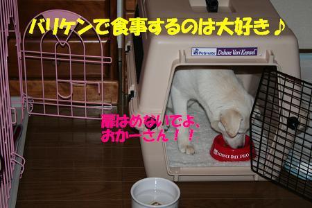 f0121712_10293736.jpg