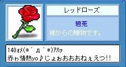 f0102630_6335545.jpg