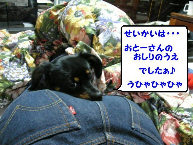 d0014841_4425080.jpg