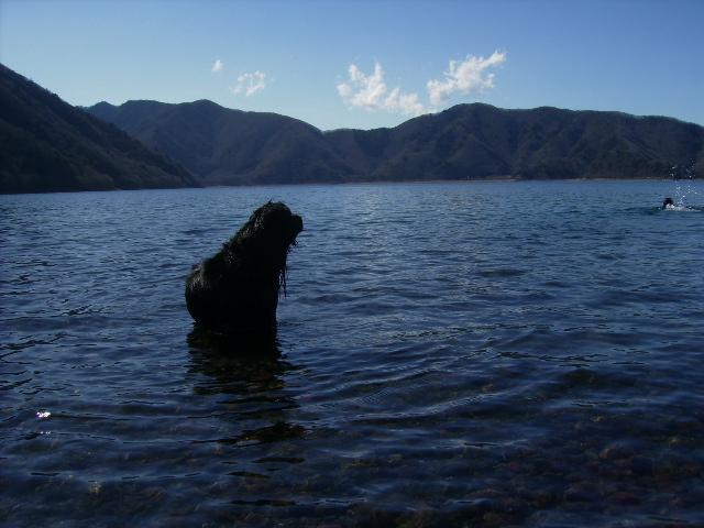 本栖湖へ_b0084194_1249826.jpg