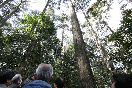 三重にて05:速水林業1(木の建築フォラム)_e0054299_23515318.jpg