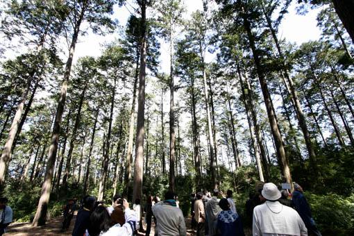 三重にて05:速水林業1(木の建築フォラム)_e0054299_23564478.jpg