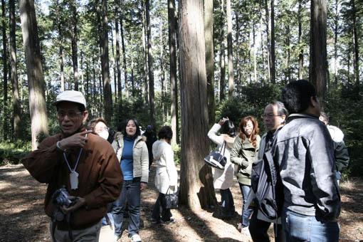 三重にて05:速水林業1(木の建築フォラム)_e0054299_2357895.jpg
