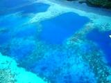 [ダイビング]海は荒れても..._a0043520_236240.jpg