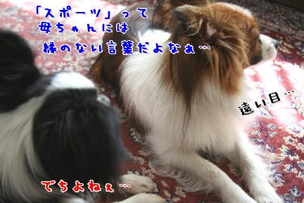 d0013149_10443340.jpg