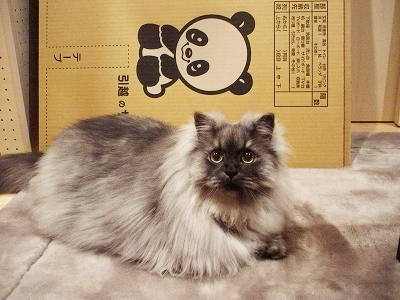 f0111467_19235741.jpg
