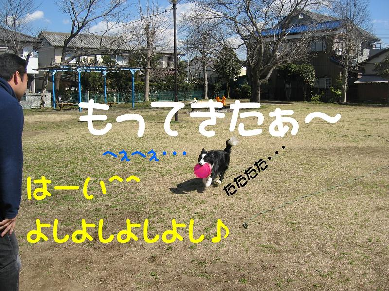 c0115178_17432269.jpg
