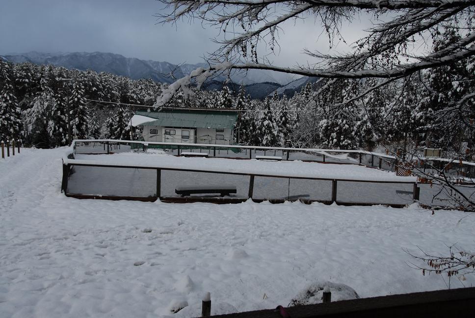 雪解け&大雪オフ  大雪編_a0049296_5201780.jpg
