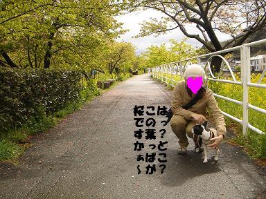 f0110199_20563893.jpg