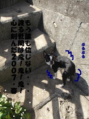 f0110199_22354369.jpg