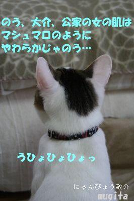 f0063729_2122016.jpg