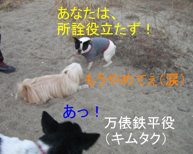f0053952_1943566.jpg
