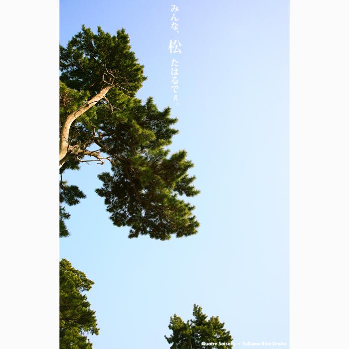 f0038408_6513343.jpg