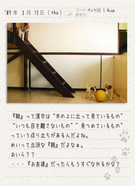 b0040323_928720.jpg