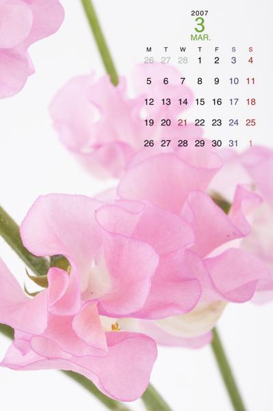 3月のカレンダー_a0003650_13284861.jpg