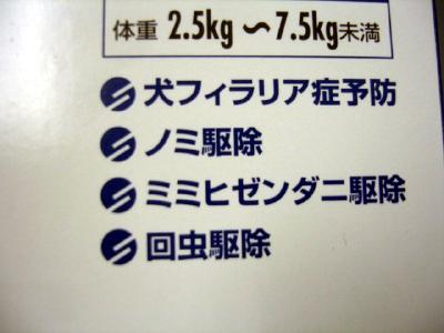 カリとエンジェルのフィラリア予防〜(^^)/_b0001465_17553825.jpg