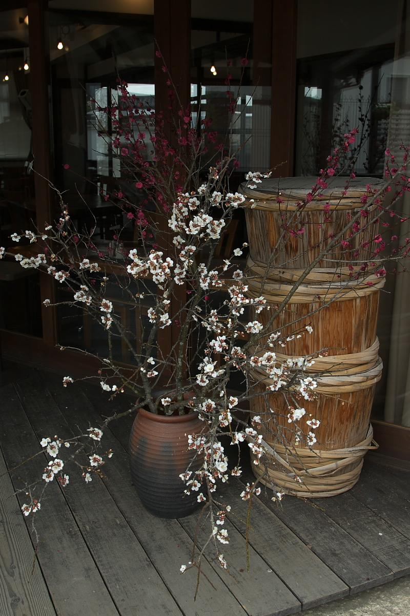 奈良町 界隈 オフ会 1_f0021869_9211380.jpg