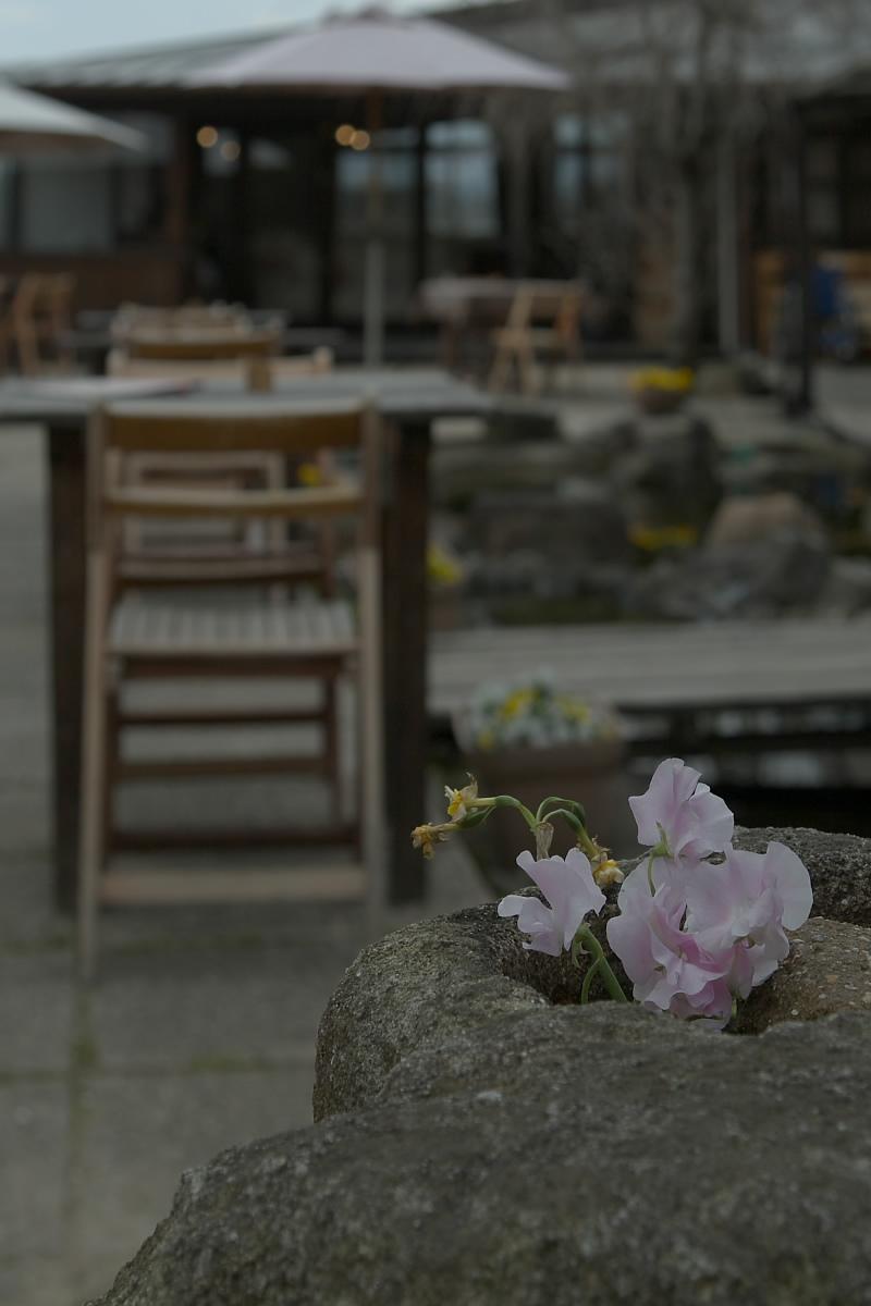 奈良町 界隈 オフ会 1_f0021869_9294956.jpg