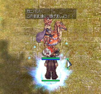 b0095882_3212166.jpg