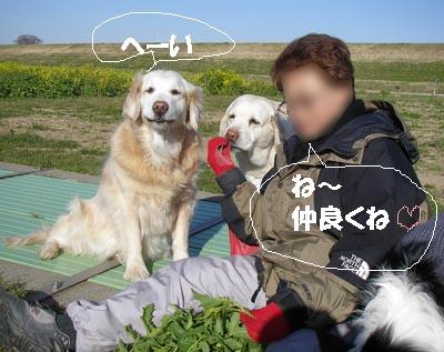 f0114893_7551610.jpg
