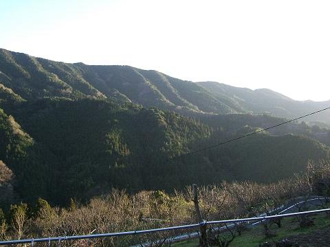 愛媛の田舎の写真_e0089232_183185.jpg