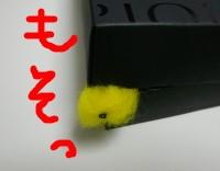 b0000168_22203659.jpg