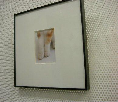 オークリーフ(猫のいるスタジオ)_f0049672_13231568.jpg