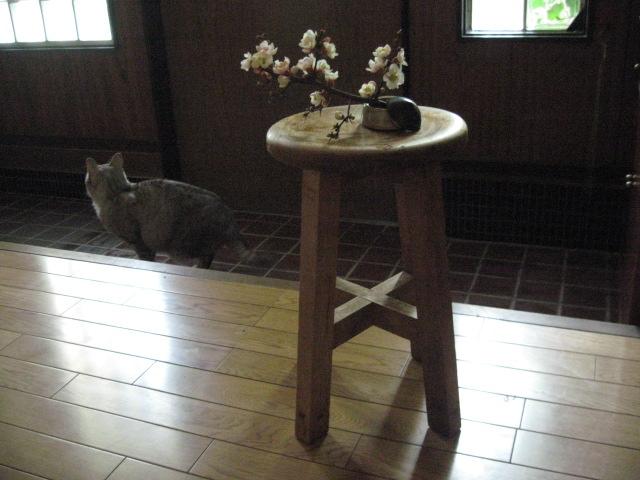 祖父の作った 椅子_d0101846_8245154.jpg