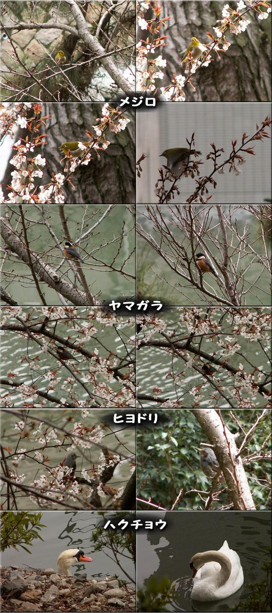 f0104569_071651.jpg