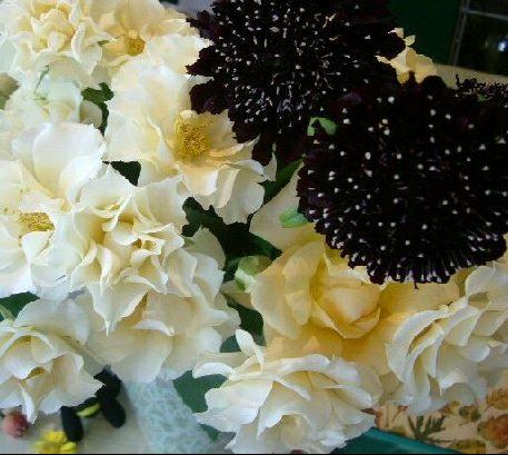 オークリーフ(深く美しい色の花)_f0049672_1284287.jpg