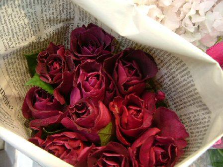 オークリーフ(深く美しい色の花)_f0049672_129451.jpg