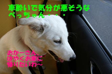 f0121712_1632334.jpg